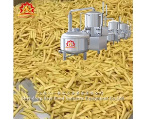 Automatic fruits chips vacuum fryer